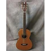 Washburn WP11SNS Acoustic Guitar