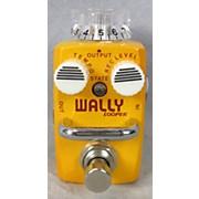 Hotone Effects Wally Looper Skyline Series Pedal