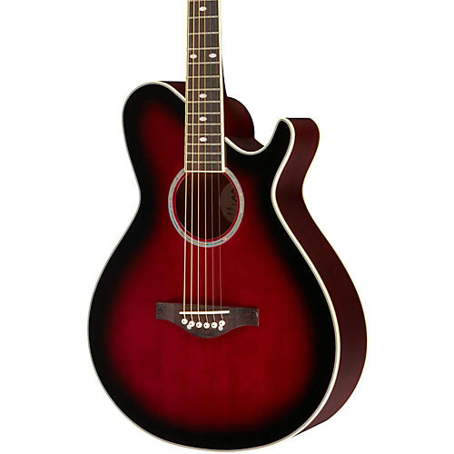 Daisy Rock Wildwood Artist Deluxe Acoustic-Electric Guitar
