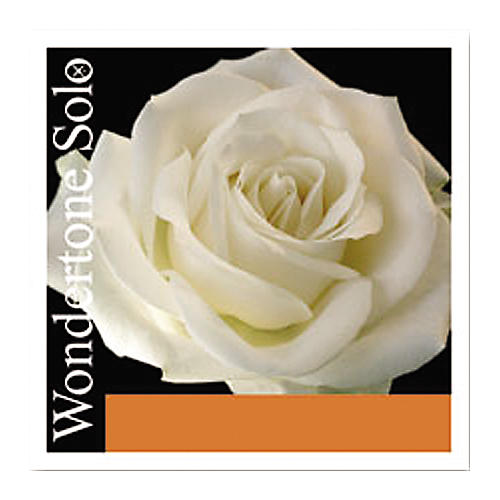 Pirastro Wondertone Solo 4/4 Size Violin String-thumbnail