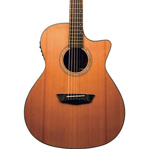 Washburn Woodline Series WLG110SWECEK Grand Auditorium Acoustic-Electric Guitar-thumbnail
