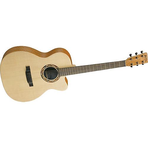 Martin XC1T Ellipse Acoustic-Electric Guitar