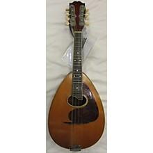 Weymann 1920s Mando-lute Mandolin