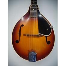 Vintage Mandolins | Guitar Center