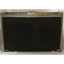 Baldwin 1960s B1 Bass Combo Amp