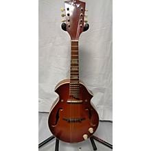 Kay 1960s Electric Mandolin Mandolin