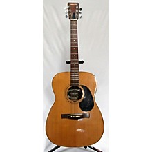 Giannini 1973 Aws710 Acoustic Guitar