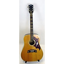 Ventura 1980s V-365P Acoustic Guitar