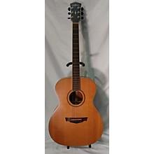 Parkwood 2010s PW320M Acoustic Guitar
