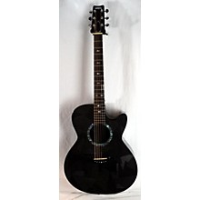 Rainsong 2012 BLACK ICE W1000NZ Acoustic Electric Guitar
