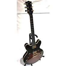 Palmer 335 Hollow Body Electric Guitar