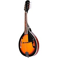 Fender Fm 100 Mandolin Pack Sunburst