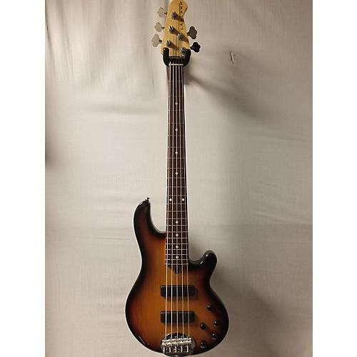 Lakland 55-01 Electric Bass Guitar