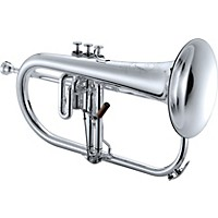 Xo 1646 Professional Series Bb Flugelhorn Silver Yellow Brass Bell