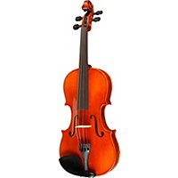 Ren Wei Shi Concert Model Violin Outfit Outfit 4/4 Size