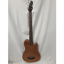 Godin A5 Sa Acoustic Bass Electric Bass Guitar