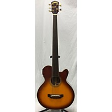 Washburn AB-35 Acoustic Bass Guitar