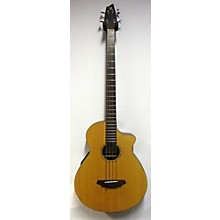 Breedlove ABJ250 Acoustic Bass Guitar