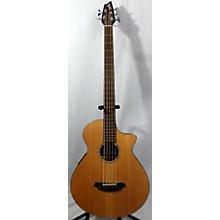 Breedlove ABJ250/SM5 Electric Bass Guitar