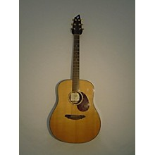 Breedlove AD20SM Atlas Series