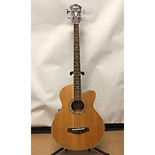 Ibanez AEB10E-LG-14-02 Acoustic Bass Guitar