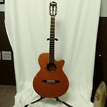 Ibanez AEG10N-TNG Classical Acoustic Guitar