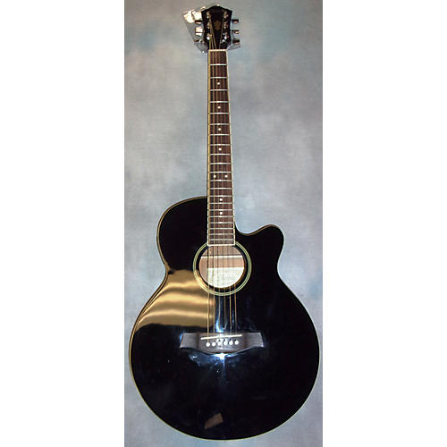 Ibanez AEG4JP Acoustic Electric Guitar
