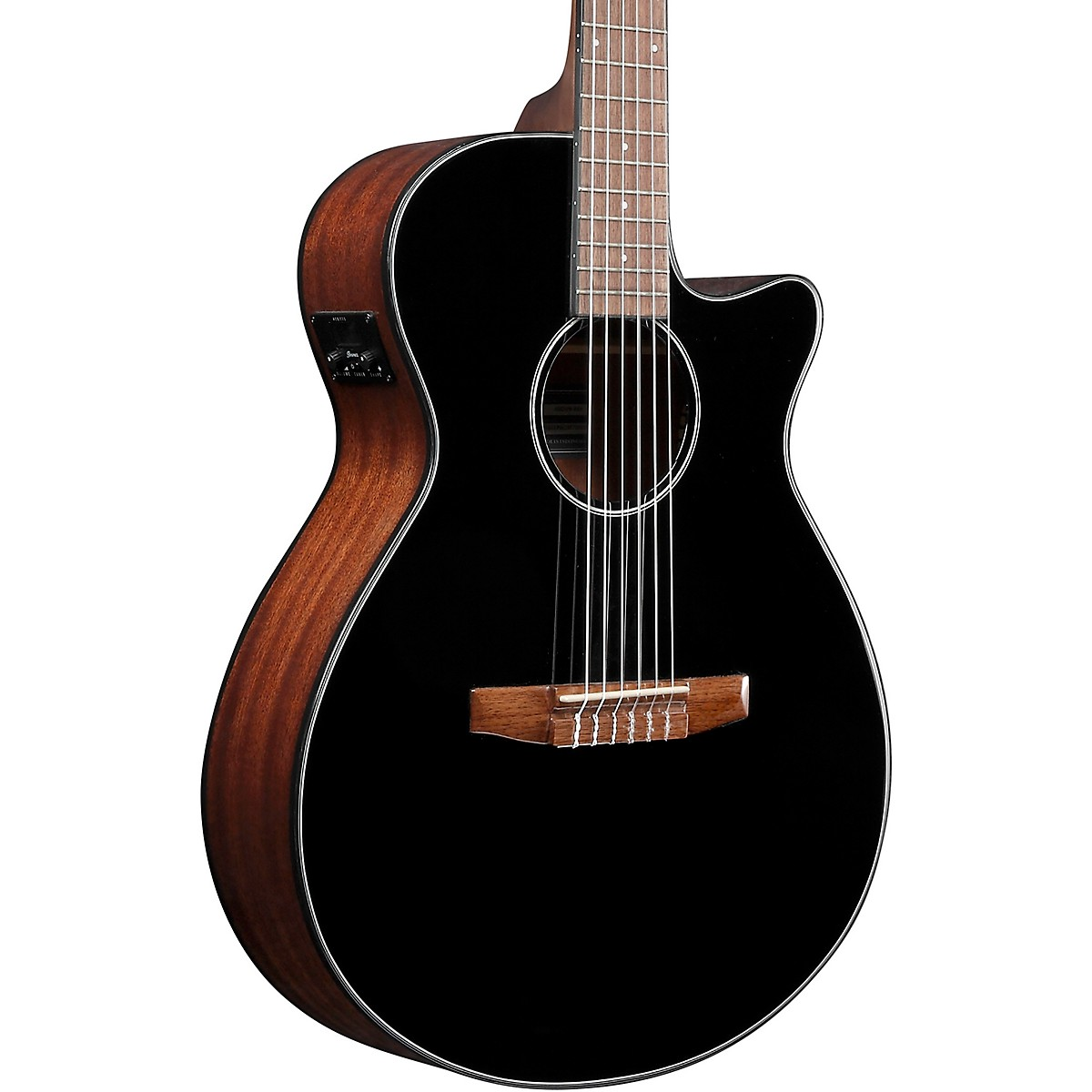 Ibanez AEG50N Acoustic-Electric Classical Guitar