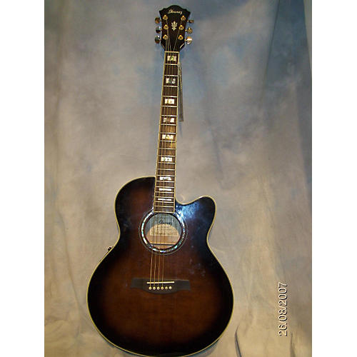 Ibanez AEL30SE Acoustic Electric Guitar