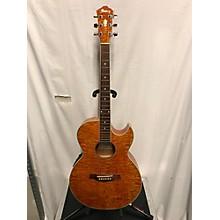 Ibanez AES10E-AM 1202 Acoustic Electric Guitar