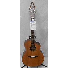 Breedlove AN250 Classical Acoustic Electric Guitar
