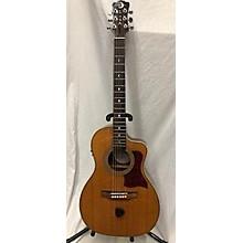 Luna Guitars APM100 Acoustic Electric Guitar
