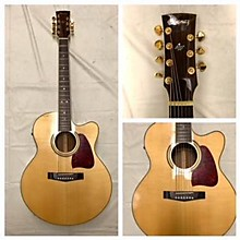 Ibanez ARTWOOD Acoustic Electric Guitar