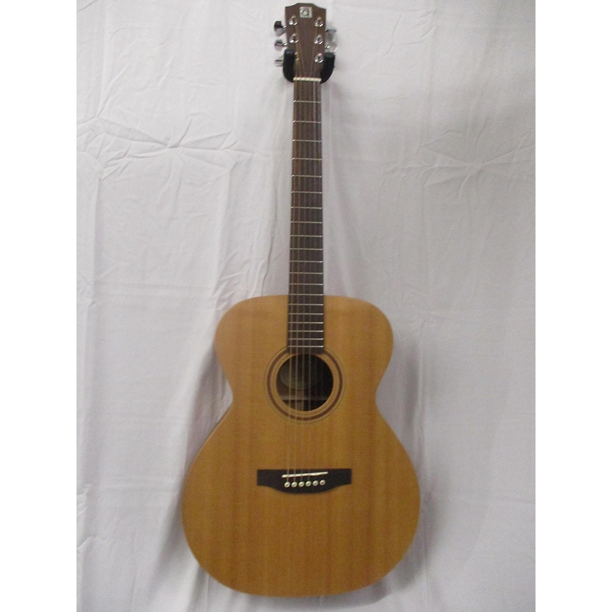 Ayers AS Acoustic Guitar