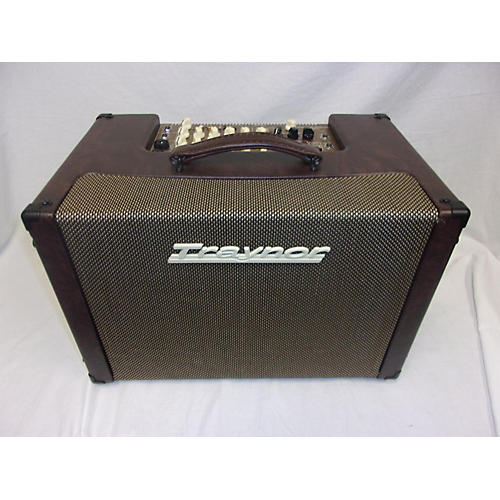 Traynor Acoustic Master Custom Acoustic Guitar Combo Amp