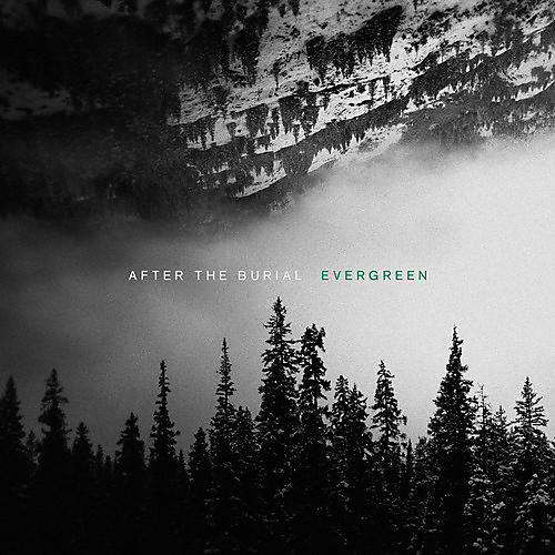 Alliance After the Burial - Evergreen
