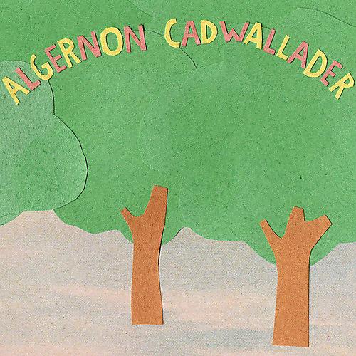 Alliance Algernon Cadwallader - Some Kind of Cadwallader