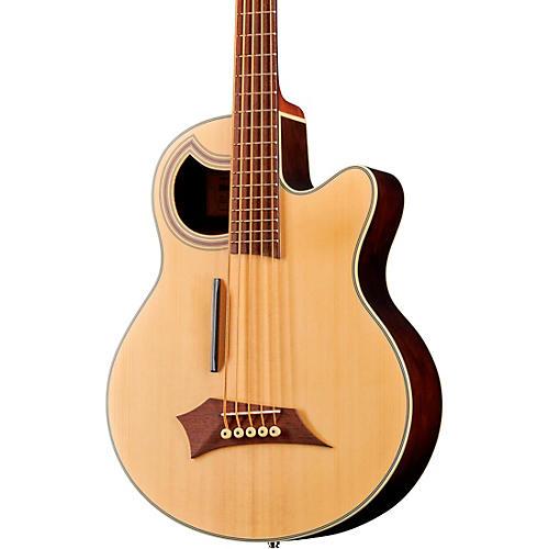 Warwick Alien Deluxe 5-String Acoustic-Electric Bass