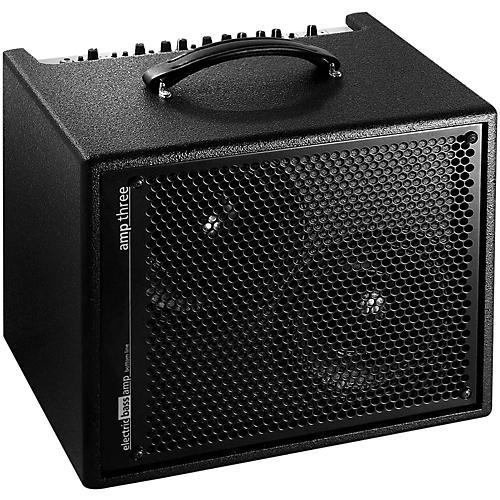 AER Amp-Three 200W Bass 2x8 Combo Amp