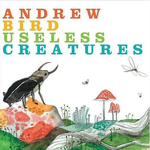 Alliance Andrew Bird - Useless