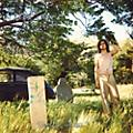 Alliance Ariel Pink's Haunted Graffiti - The Doldrums thumbnail