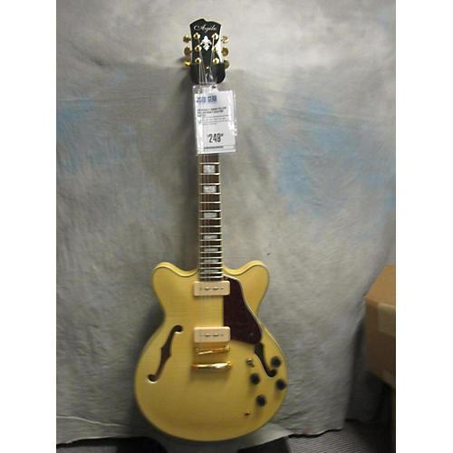 Agile As820 Hollow Body Electric Guitar