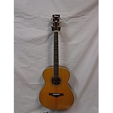 Ibanez Avm10 Acoustic Guitar