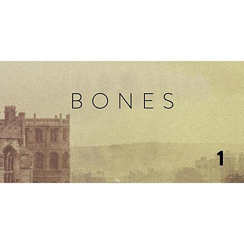 Spitfire BML Bones Vol 1