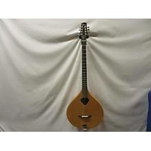 Gold Tone BZ-500 Bouzouki Mandolin