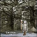 Alliance Baby Dee - Am a Stick thumbnail