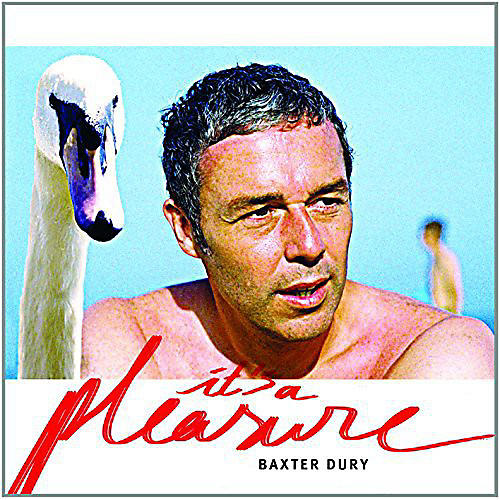 Alliance Baxter Dury - It's a Pleasure