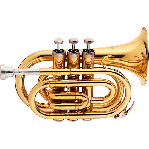 Stagg Bb Pocket Trumpet with Case and Mouthpiece