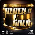 Joey Sturgis Drums Black & Gold Drums thumbnail