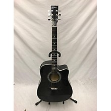 Esteban Black & Silver Acoustic Electric Guitar